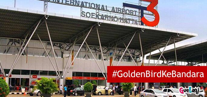 transportasi antar jemput bandara golden bird
